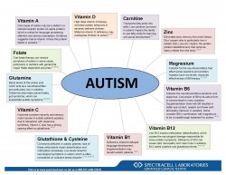 Disease Wheel - AUTISM