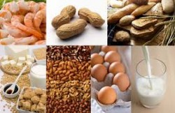 Food Intolerances and ADHD