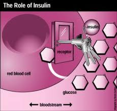 insulin resistance and magnesium